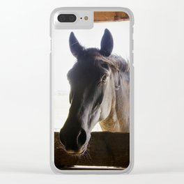 Horse Portrait I Clear iPhone Case