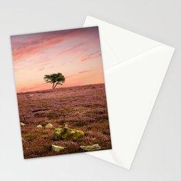 Sole Survivor Stationery Cards