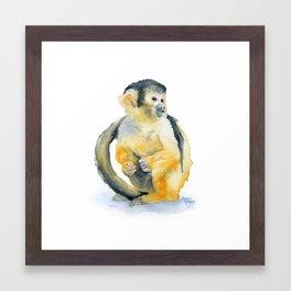 Sqirrel Monkey Framed Art Print