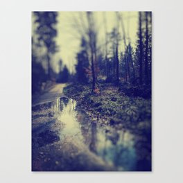 In the forrest Canvas Print