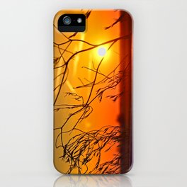 Sunset through the bushes iPhone Case