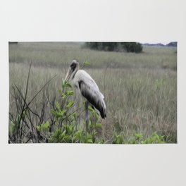 Wood Stork in the Glades Rug
