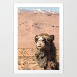 Desert Life II - Morocco Art Print