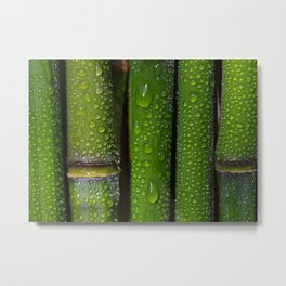 Bamboo rods Metal Print