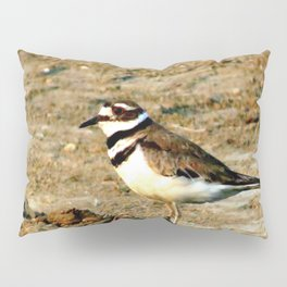 13ne014 Pillow Sham