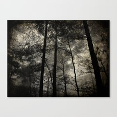 Foggy Nightfall Canvas Print