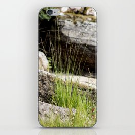 Natures Garden iPhone Skin