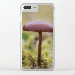 Beneath the Tall Trees Clear iPhone Case