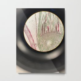 Microscopic View Metal Print