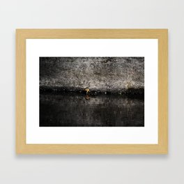 The little anatinae Framed Art Print