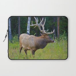 Bull Elk shows off his rack in Jasper National Park Laptop Sleeve
