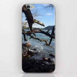 branching out iPhone Skin