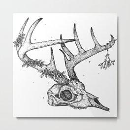 Reindeer Anatomy Metal Print