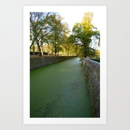 The Green River at Chenonceau Art Print