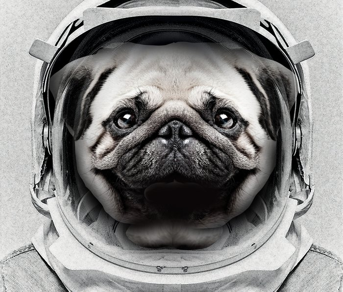 Puggly Pawstrong Astro Dog Metal Travel Mug