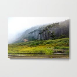 Inland - Fog Moves Into Forest Along Washington Coast Metal Print