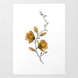 Watercolor Handrawing Flower Art Art Print