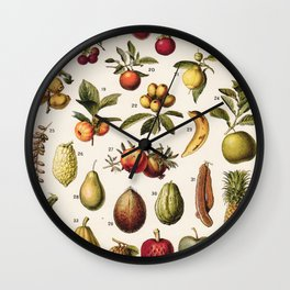 Adolphe Millot - Fruits exotiques - French vintage botanical illustration Wall Clock