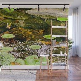 Baby Koi Pond Wall Mural