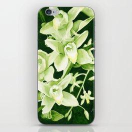 Cymbidium Orchids iPhone Skin