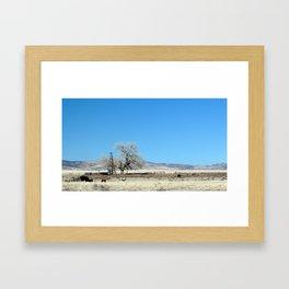 The Plains of San Agustin Framed Art Print