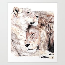 Lion Embrace Art Print