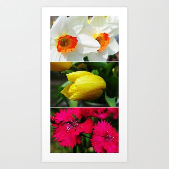 Flower Triptych Art Print
