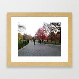 Fall in the Park Framed Art Print