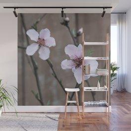 Peach Blossoms Wall Mural