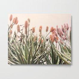 Cactus Blooms 2 Metal Print