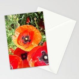 Rejoice Stationery Cards