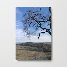 Fall Tuscany 3 Metal Print