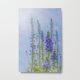 Cornflower Blue and Lavender Foxglove Flowers Metal Print