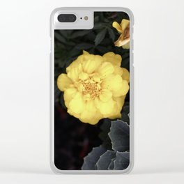 The Soft Yellow Flower (Vintage) Clear iPhone Case
