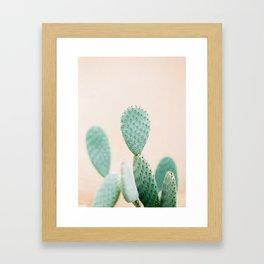 "Cactus photo print ""Botanical cactus"" Morocco | Modern Wall art | Pastel / Botanical Framed Art Print"