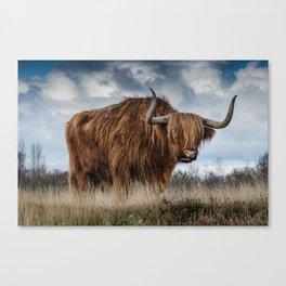 Highlander 1 Canvas Print