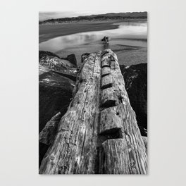 Surfers and Driftwood Canvas Print
