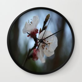 Close Up Apricot Blossom In Pastel Shades Wall Clock