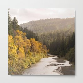 Humboldt County Fall Colors, Autumn Decor, Redwoods, Avenue of the Giants California Photography  Metal Print