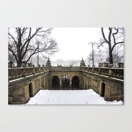 NYC Blizzard of 2015 in Central Park Canvas Print