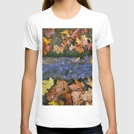 Alhambra Palace forest in autumn T-shirt