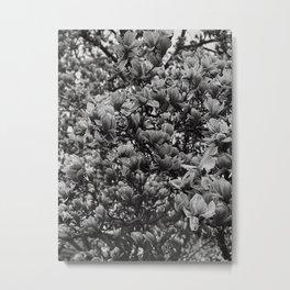 bloom/gray Metal Print