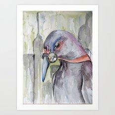 Urban Decay Pigeon Art Print