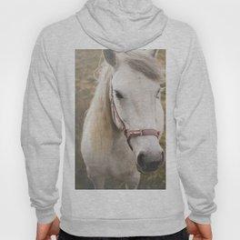 Meditating Horse Hoody