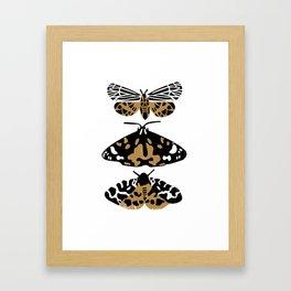Flutter - butterfly art print, moth art print, linocut art print, insect art print, Framed Art Print