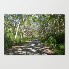 Mystical Tree Road Canvas Print