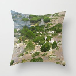 it rocks Throw Pillow