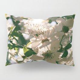 spring is inspiration Pillow Sham