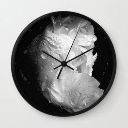 peony in the morning  Wall Clock