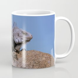 Iguana from Aruba Coffee Mug